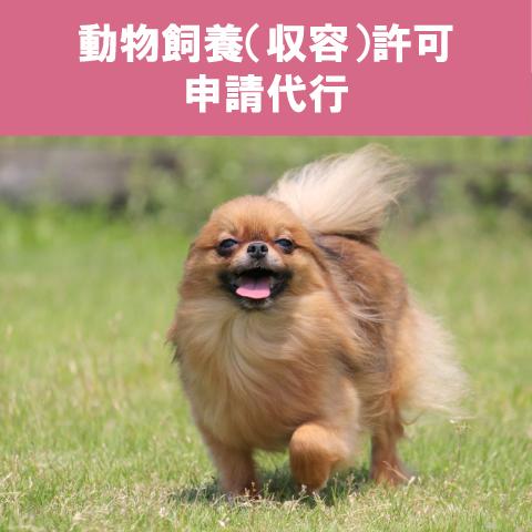 動物飼養(収容)許可申請代行